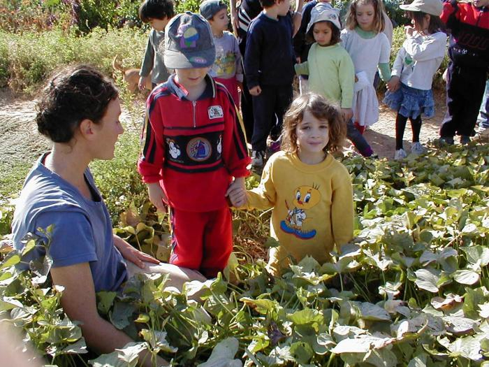 Kibbutz Kids and Eco-Fun