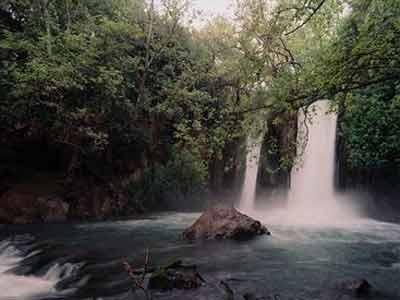 Banias